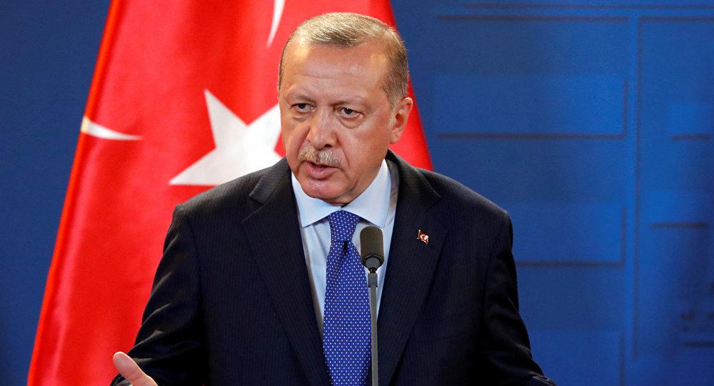 أول تعليق من أردوغان على إعلان النظام السوري دخول منبج