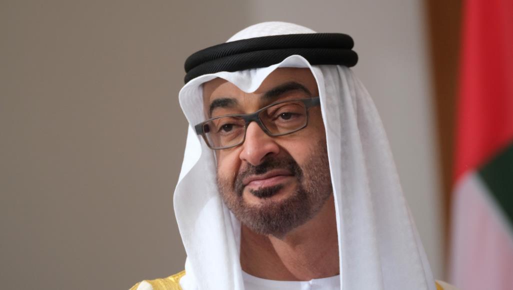 في تغييرات هزت أبوظبي.. محمد بن زايد يطيح بشقيقه من منصب قيادي ويعين ابنه