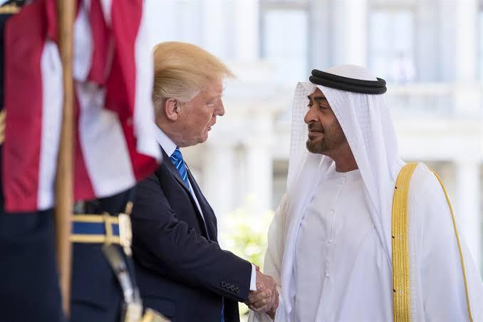 """""""ترامب"""" يصدم محمد بن زايد بموقف مفاجئ من التدخل التركي في ليبيا"""