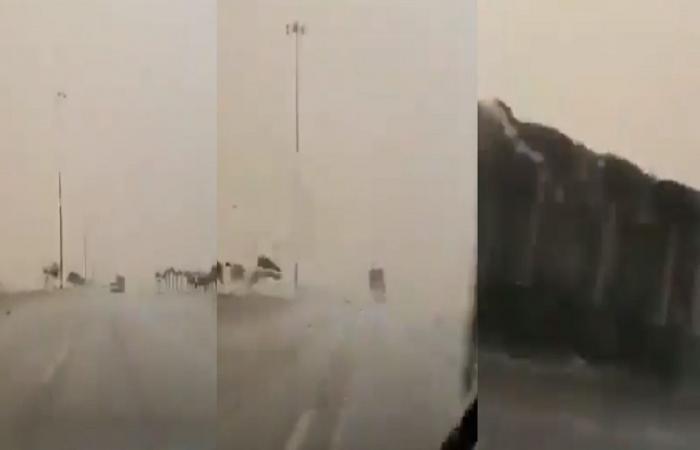 """كأنها """"ريحًا صرصرًا عاتية"""".. عاصفة مرعبة في السعودية تقلب شاحنة مثل اللعبة (فيديو)"""
