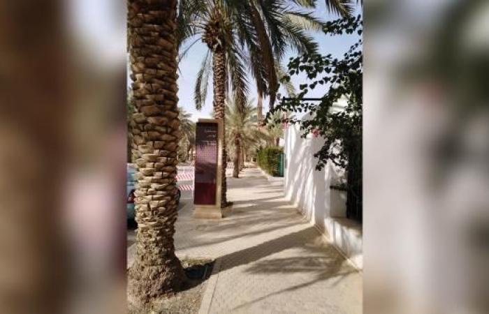 """جدل داخل قصور""""آل سعود"""".. أميرة شابة عمها """"الملك سلمان"""" ترتكب فعلًا صادمًا"""
