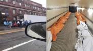 ضجة في نيويورك بعد أنباء عن دفن الجثث في الحدائق العامة
