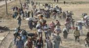 الأردن تنتفض دعمًا للنازحين السوريين على الحدود الأردنية