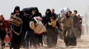 دولة جديدة يتجه إليها السوريين هربًا من العنصرية.. شعبها مضياف ومتسامح