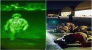 اليوم أفغانستان بلا أمريكان.. انتهت أطول حرب في تاريخ الولايات المتحدة وانتصرت طالبان (شاهد أجواء النصر)