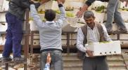 """""""فتح حلب"""" توضح شروطها لإدخال المساعدات عبر الكاستيلو"""