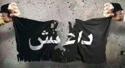 ماذا بعد هزيمة تنظيم الدولة؟
