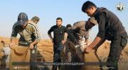 """""""المقاومة الشعبية"""" تعلن عن تشكيل لجنتها الفرعية في منطقتي أطمة والمخيمات شمال إدلب"""