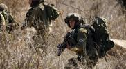 قوة اسرائيلية تحاول إختطاف راعى أغنام جنوب لبنان