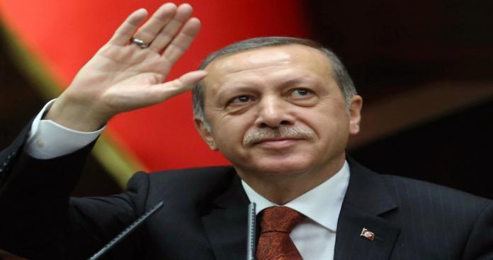 """""""أردوغان"""" يشكر الخوذ البيصاء لدعهم تركيا في إخماد حرائق الغابات"""