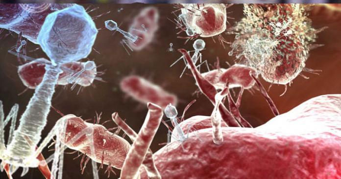 الأردن يتخذ إجراءات احترازية لمنع وصول وباء الكوليرا