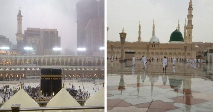 صدمة على مواقع التواصل.. إسرائيل تكشف امتلاك كنز تاريخي يخص مكة والمدينة (صورة)