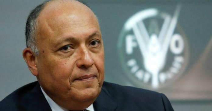 تصريحات مصرية جديدة بشأن إرسال قوات إلى سوريا