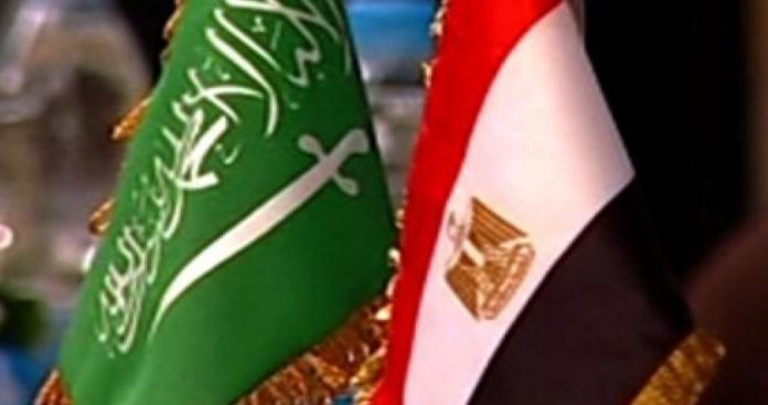 """مصادر حكومية عربية تحذر السعودية ومصر من """"أبشع كارثة بيئية"""" في التاريخ"""