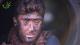 من داخل حراقات النفط بحلب.. شاب سوري يبكي الملايين بصوته العذب (فيديو)