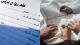 مصدر قضائي بالنظام يُفجِّر مفاجأة صادمة بشأن زواج الفتيات في دمشق