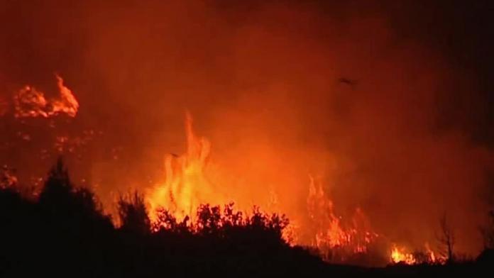 حركة نزوح من قرى جبال اللاذقية نتيجة توسع رقعة الحرائق | الدرر الشامية